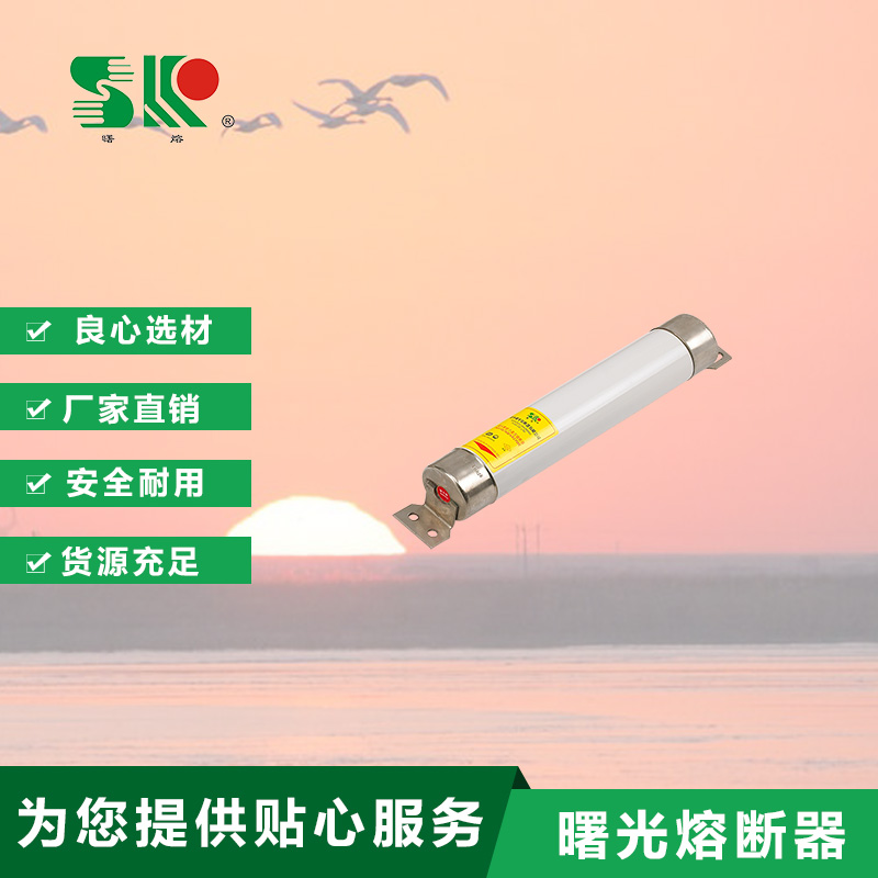 O型油浸式高分断能力高压限流LOVEBET爱博体育官网