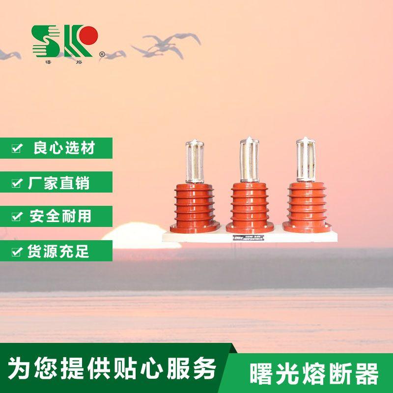 ZRW、FGB系列 阻容吸收器